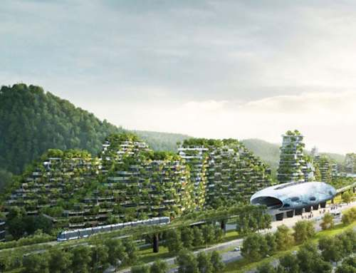 Forest City created to fight air pollution in China